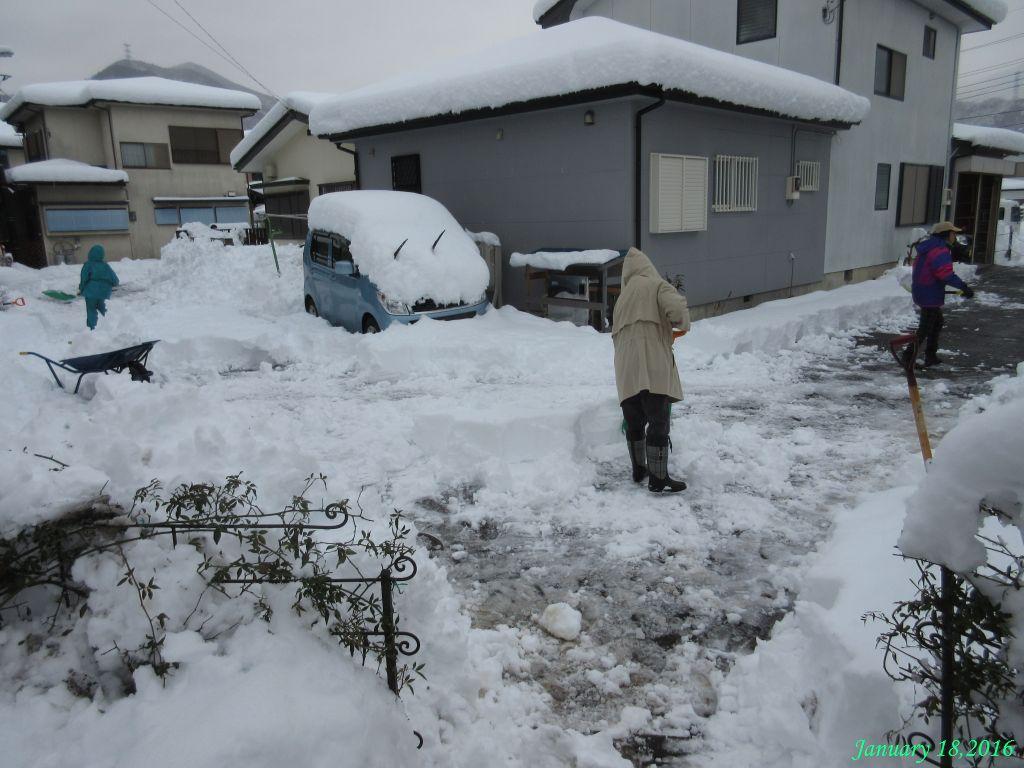 画像3(雪の一日12時前)