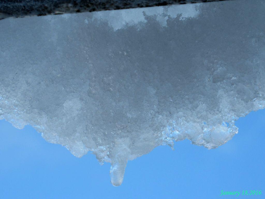 画像8(雪の一日16時頃)