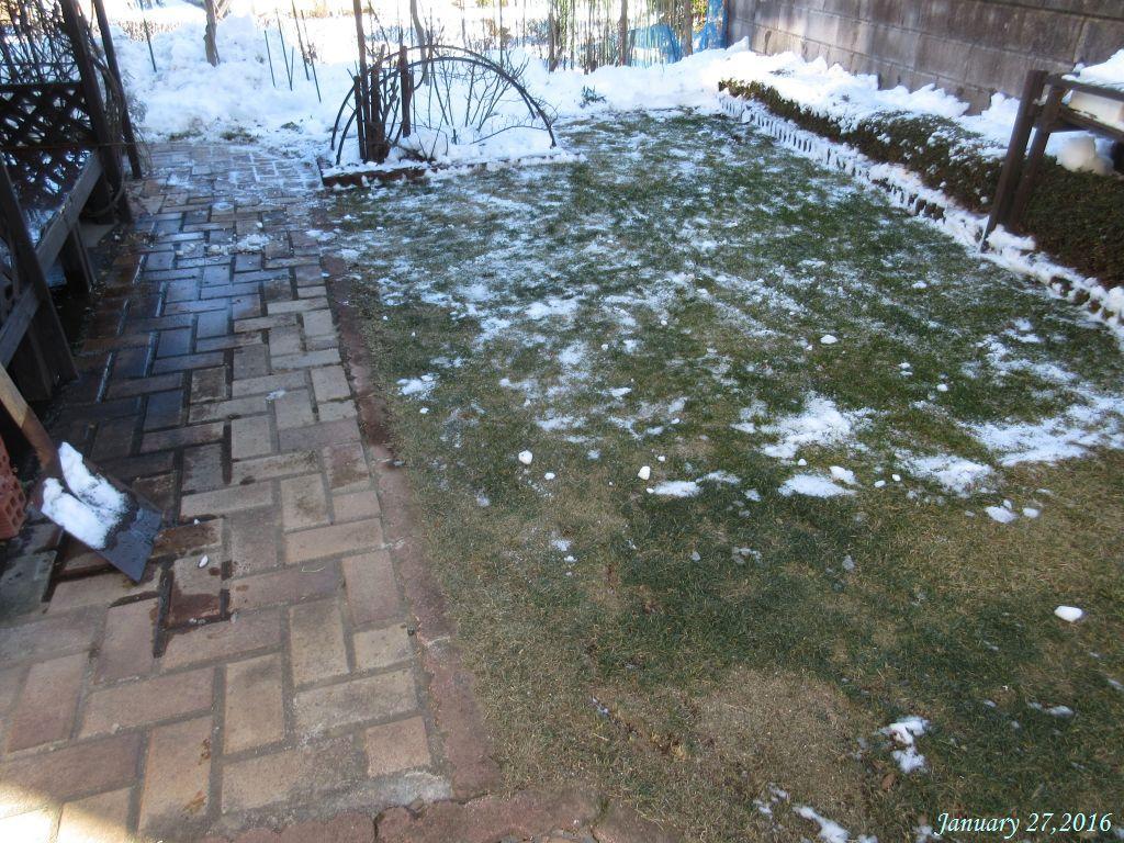 画像18庭の雪かき)