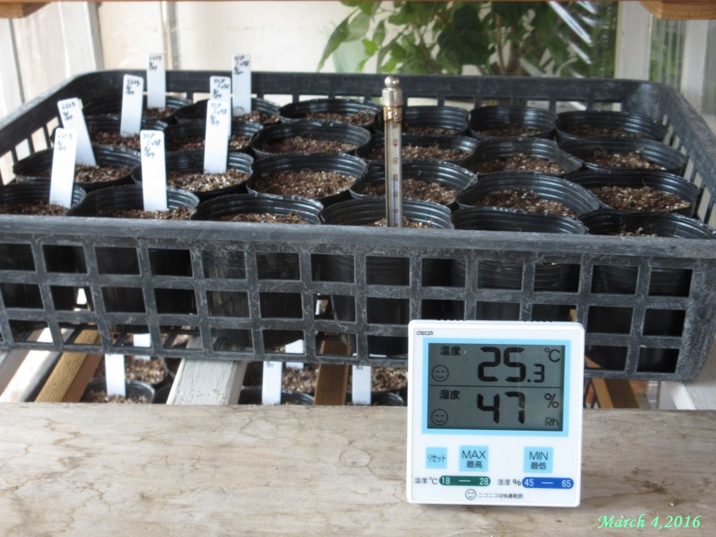 画像2(室内温室内の気温と地温)