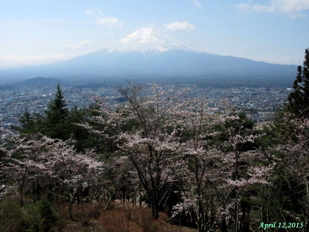 画像6(富士山)