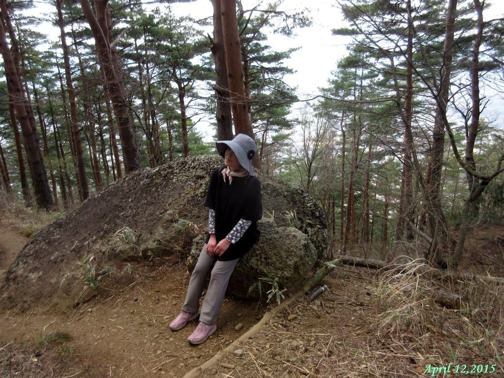 画像9(新倉山山頂とゴンゴン石の中間)