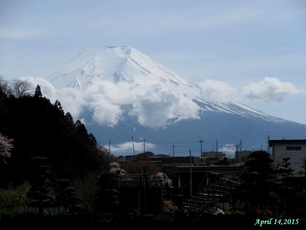 画像6(桂川大池橋付近から見た富士山)
