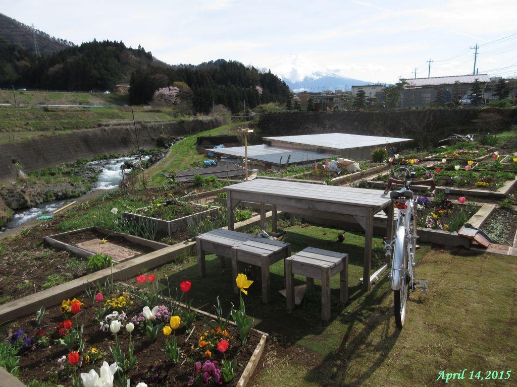 画像7(桂川大池橋付近の公園)