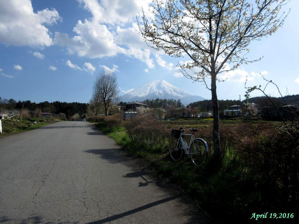 画像10(富士吉田の農道)