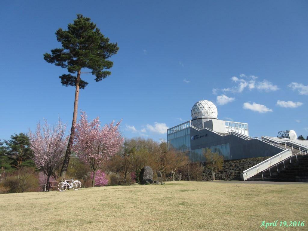 画像15(富士山レーダードームと芝生)