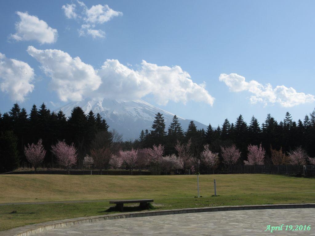 画像16(富士山レーダードームから見た富士山)
