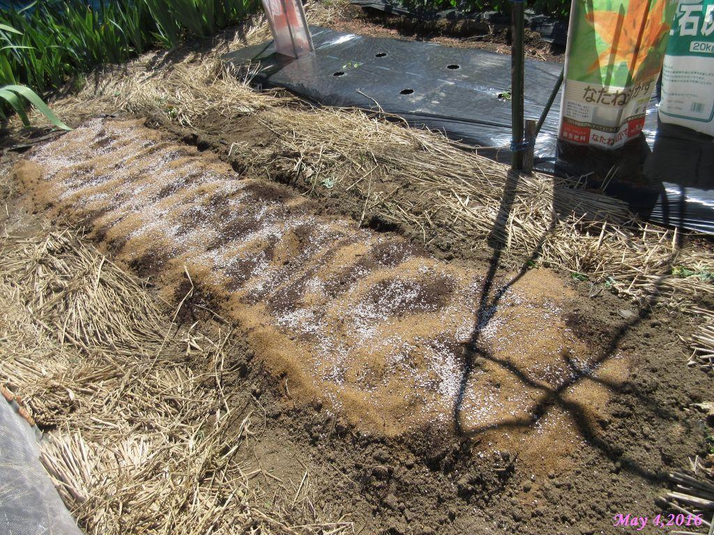 画像7(堆肥・油粕・化成肥料)