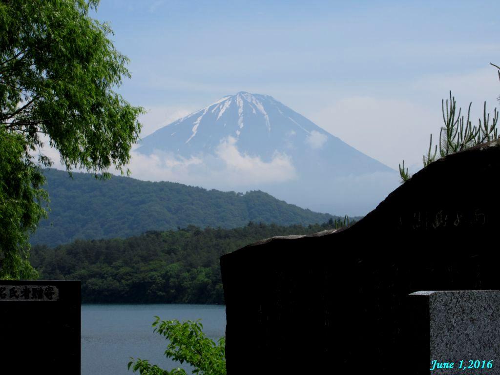 画像6(西湖根場慰霊碑からの富士山)