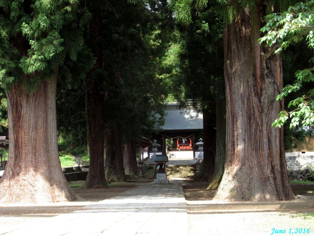 画像11(河口浅間神社)