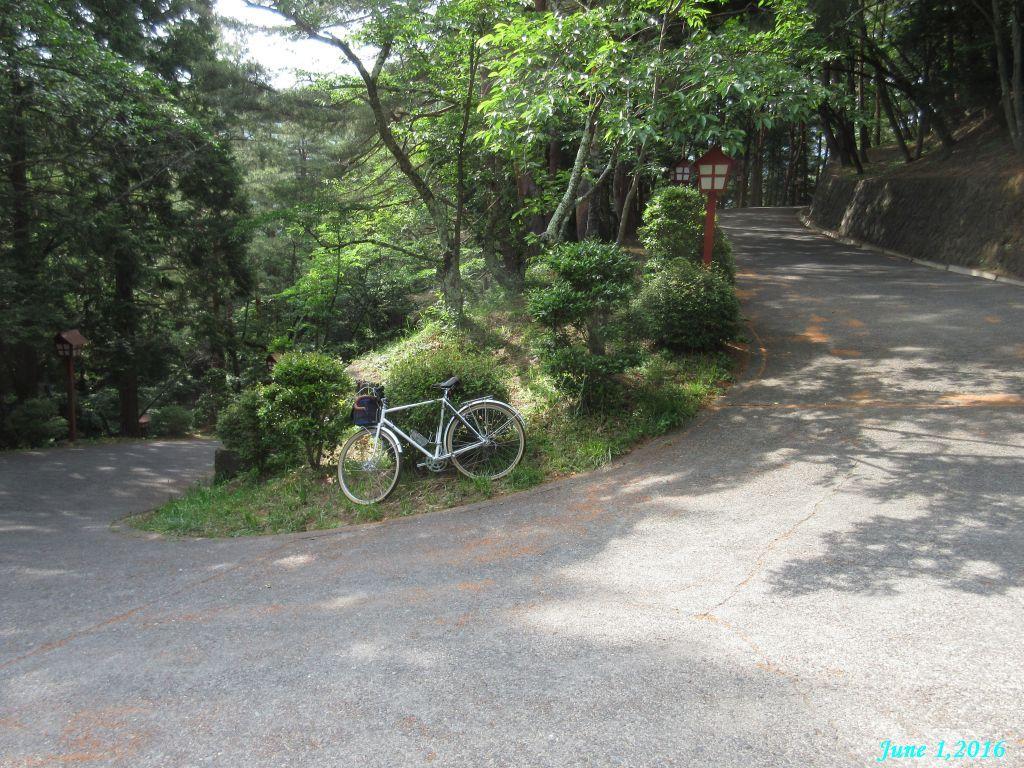 画像18(新倉山公園の坂道)