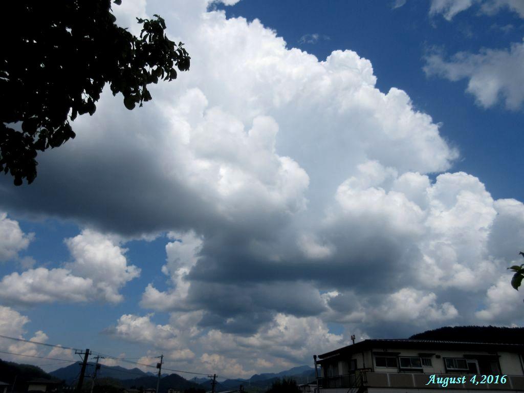 画像2(東の空)