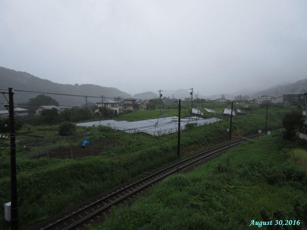 画像2(午前中雨)