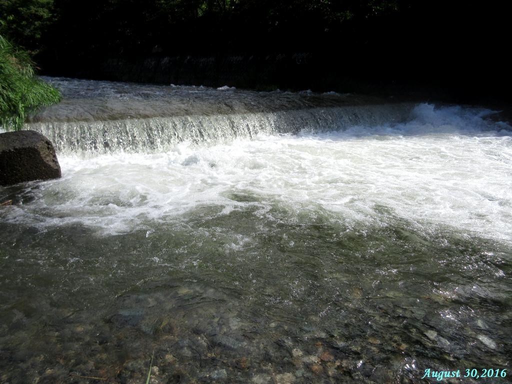 画像5(鹿留川)