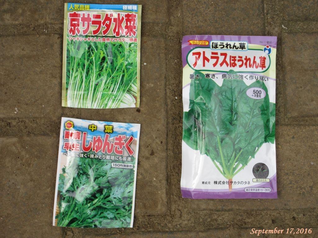画像11(ほうれん草・京水菜・春菊の種袋)