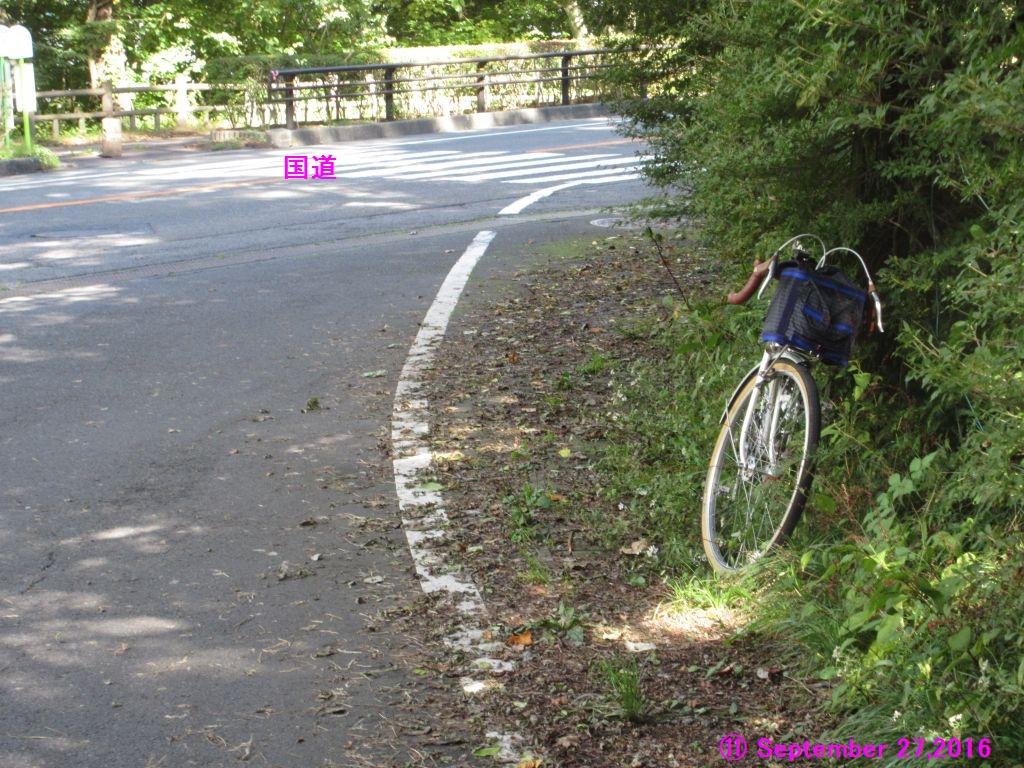 画像15(11湖畔の国道から山中湖村へ入る三叉路)