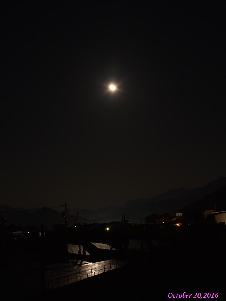 画像1(月光)