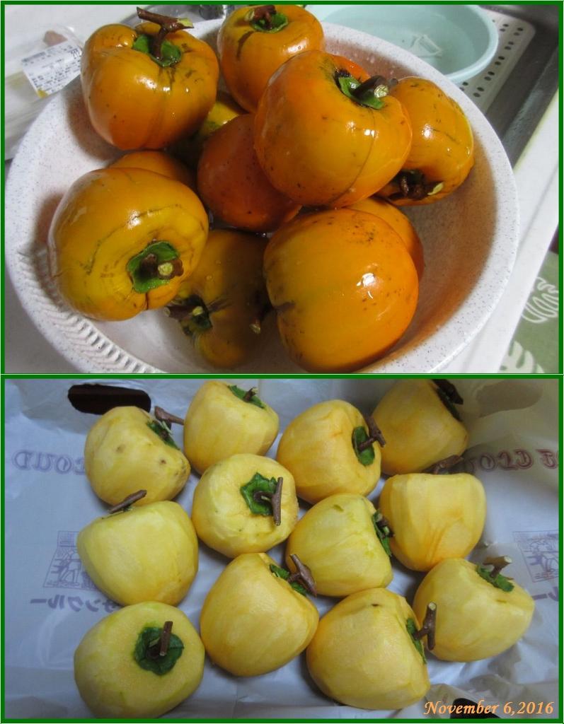画像5(収穫した百匁柿)