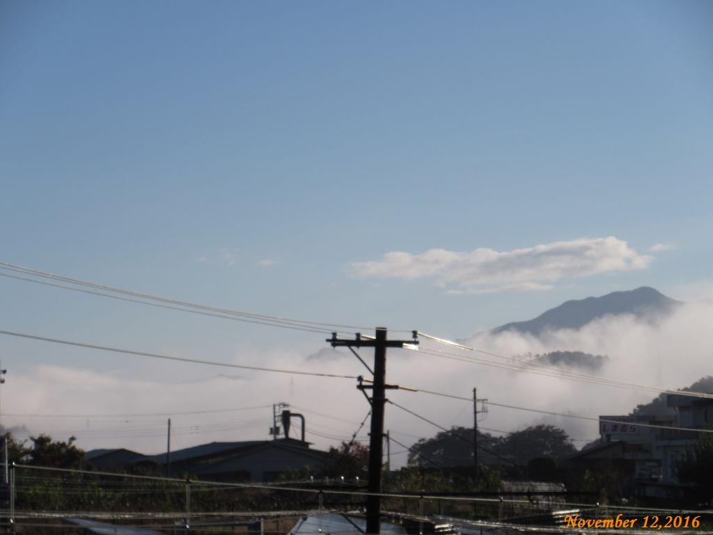 画像4(朝霧)