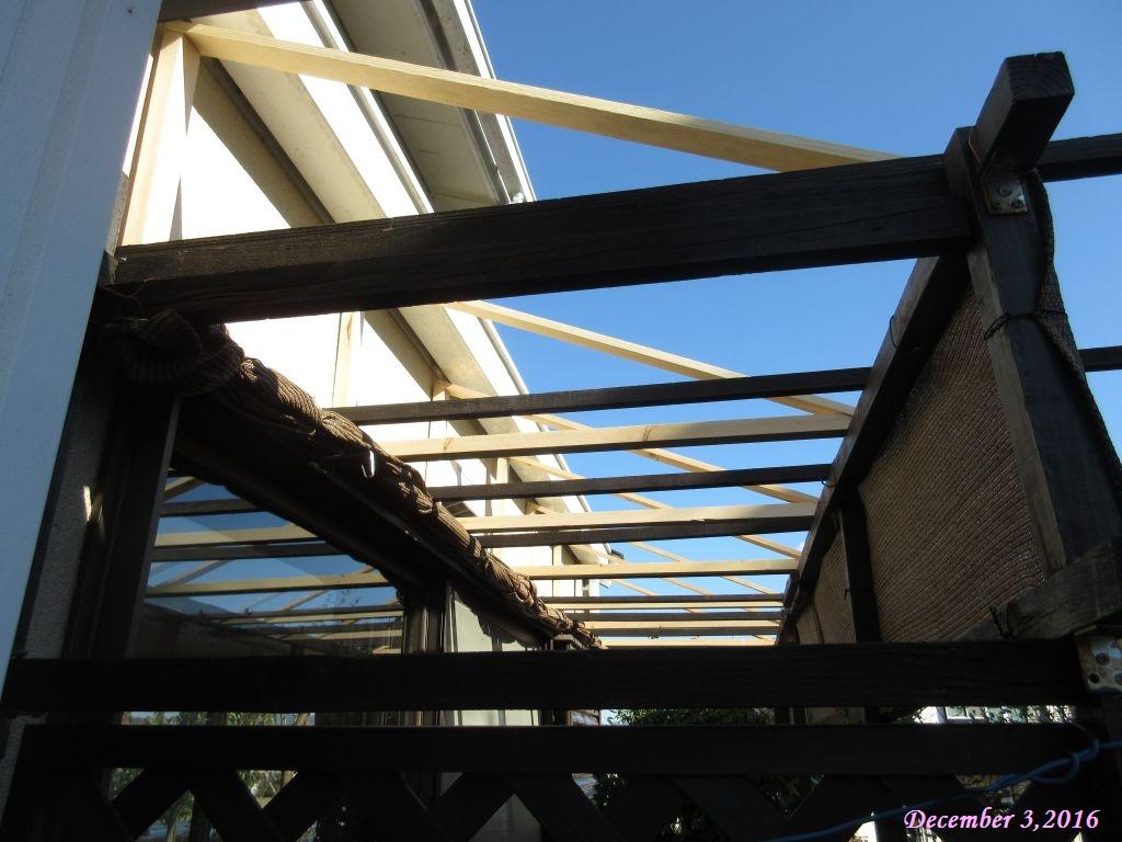 画像3(屋根の仮置き)