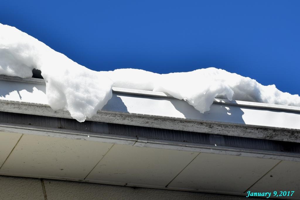 画像6(雪解け)
