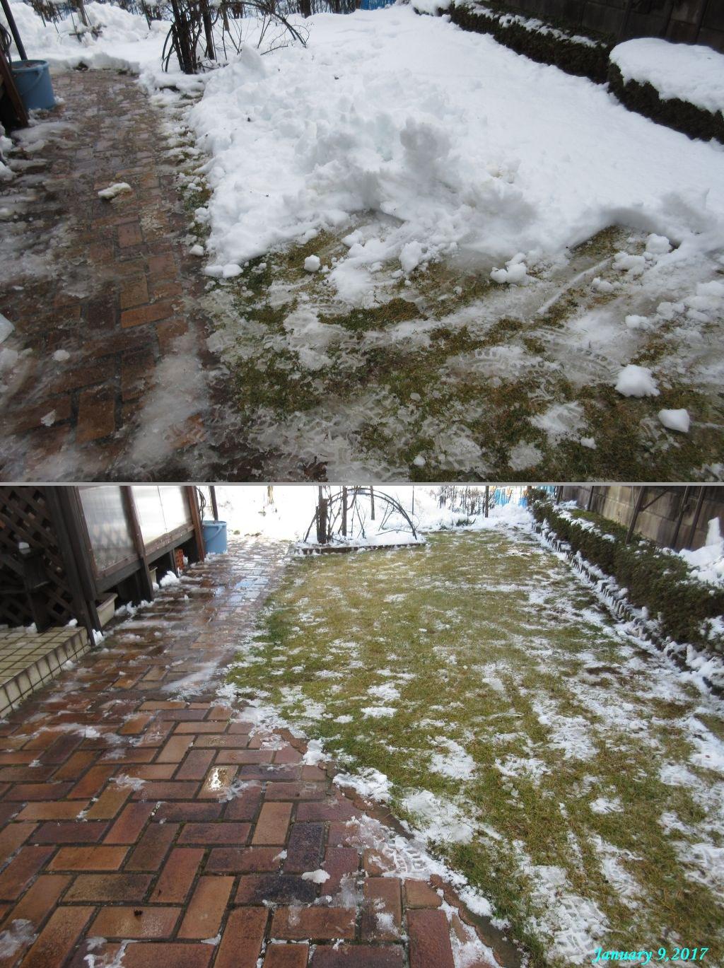 画像8(庭の雪かき)
