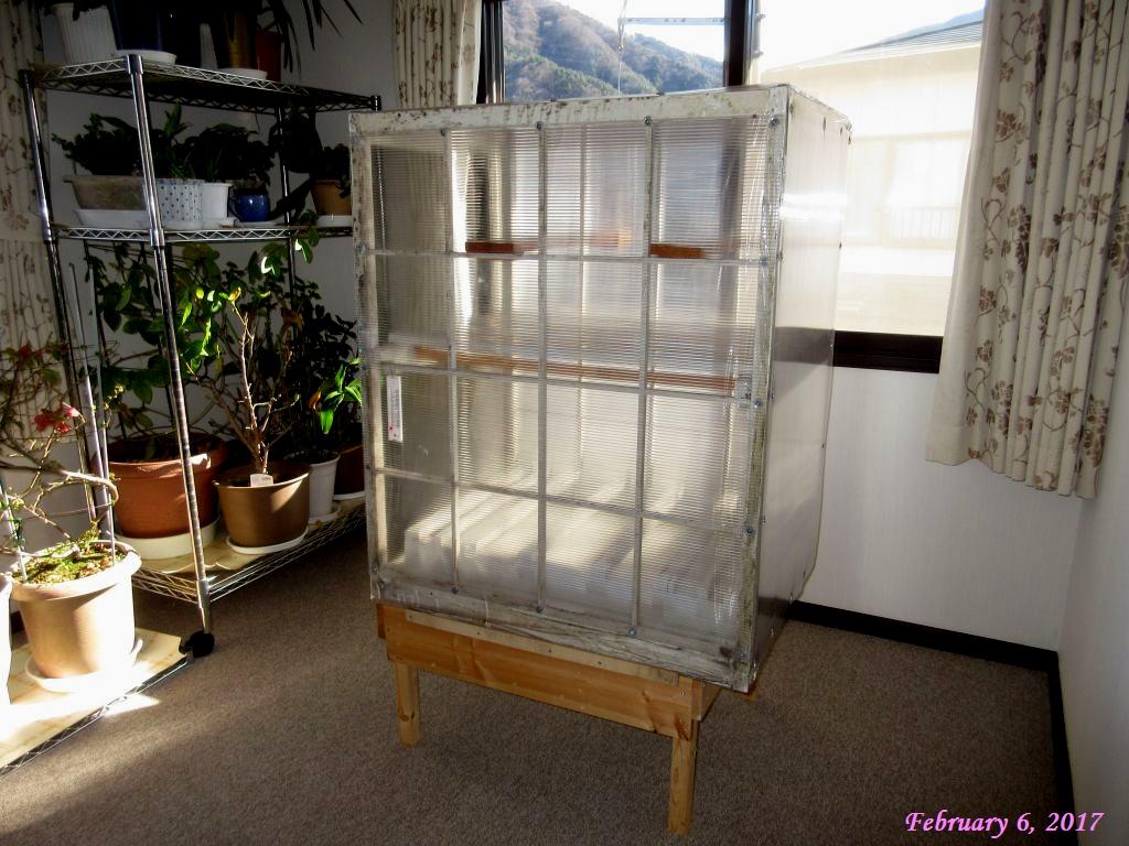 画像3(室内用温室の設置)