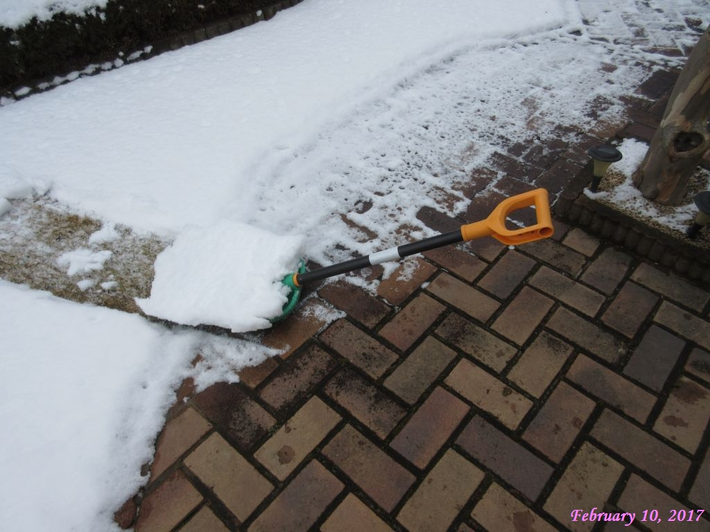 画像5(芝生の上の雪)