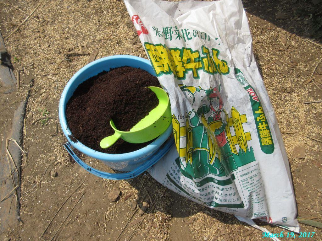 画像9(溝施肥に使った堆肥)