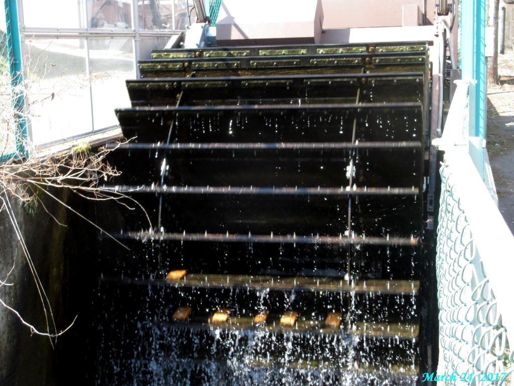 画像5(田原の小型水力発電の水車)