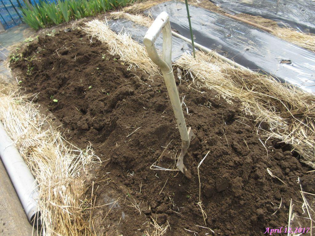 画像6(畝の掘り起こし)