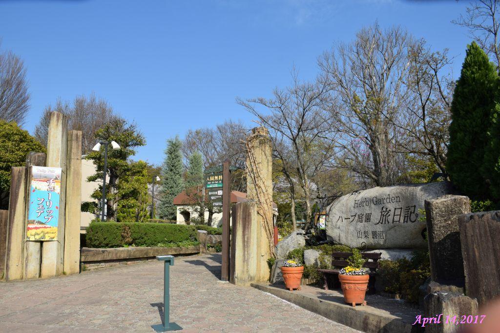 画像15(ハーブ庭園「旅日記」)