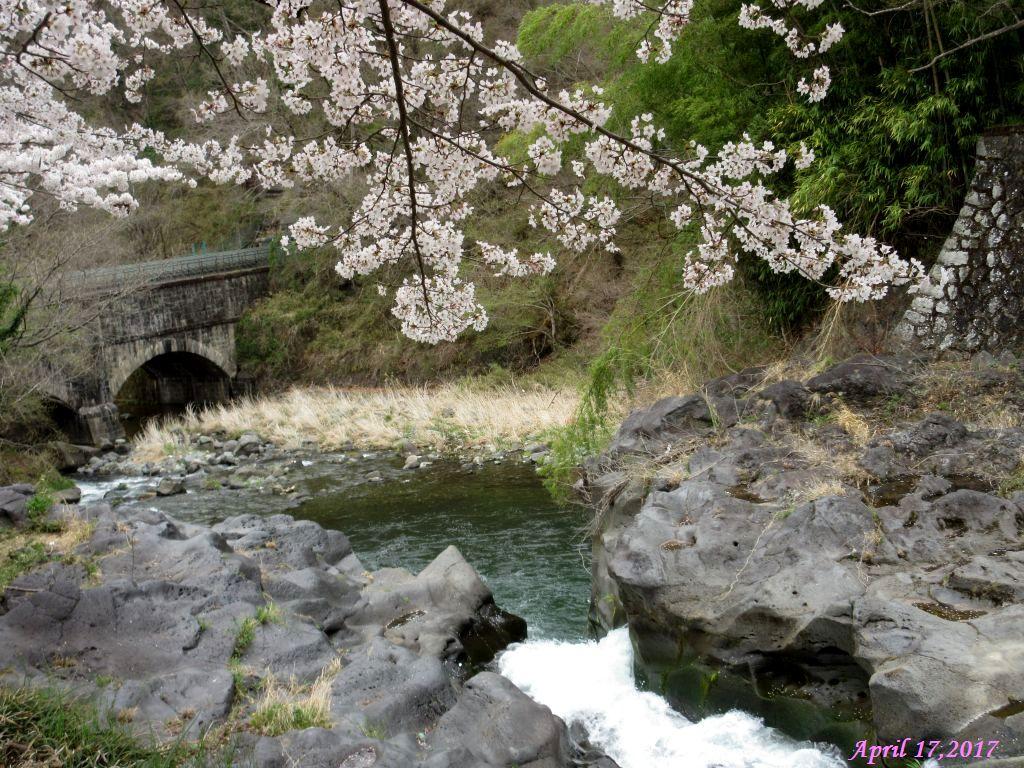 画像12(水路)