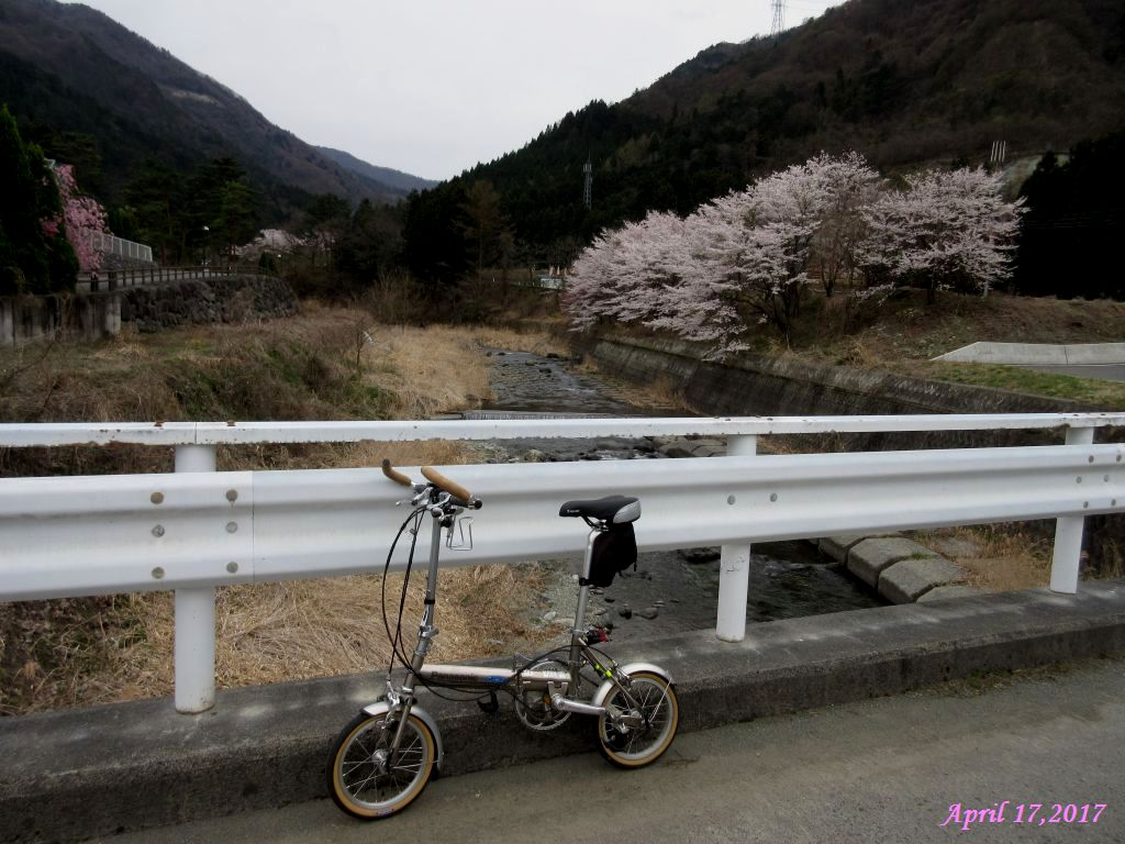 画像14(鹿留川・岩下橋)