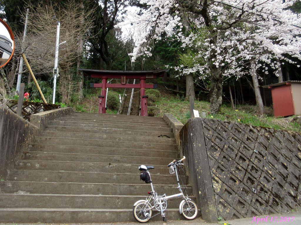 画像19(境地区の神社)