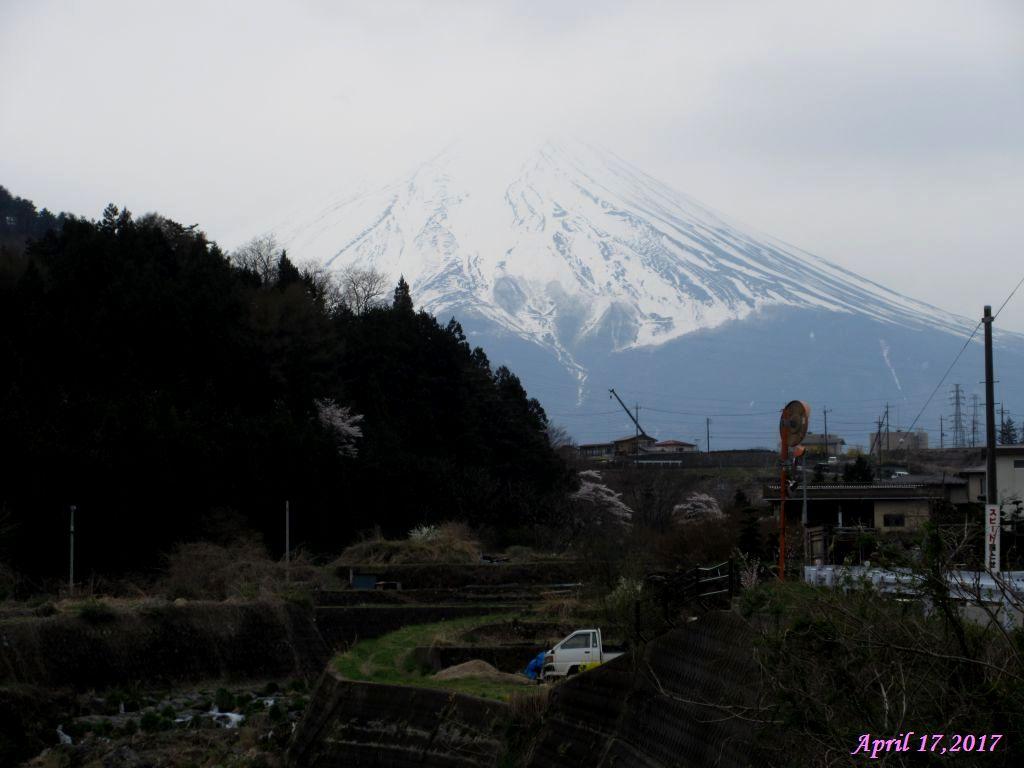 画像21(大池橋付近から見た富士山)