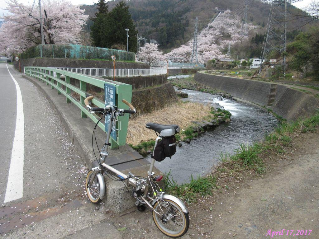 画像25(桂川宮下橋付近)