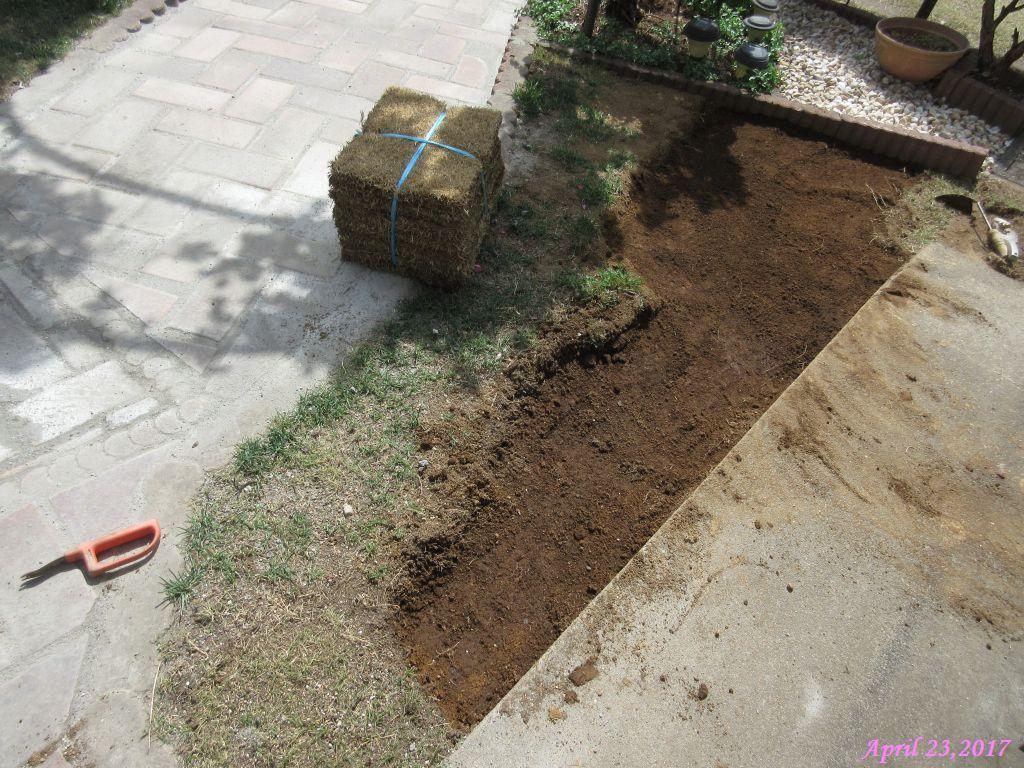 画像8(芝生の修復)