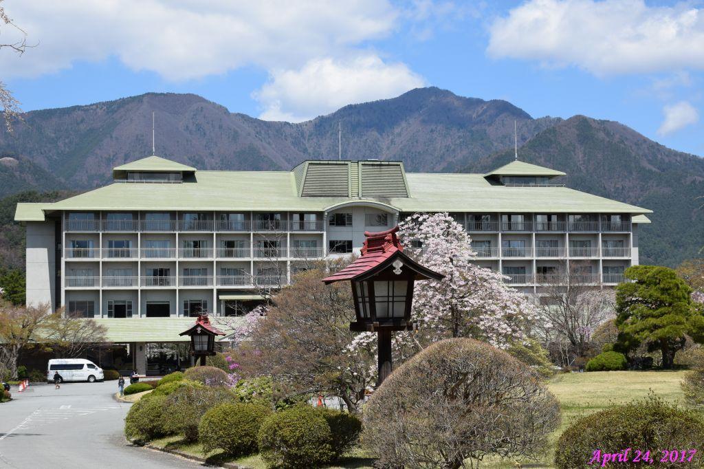 画像27(富士ビューホテルの桜)