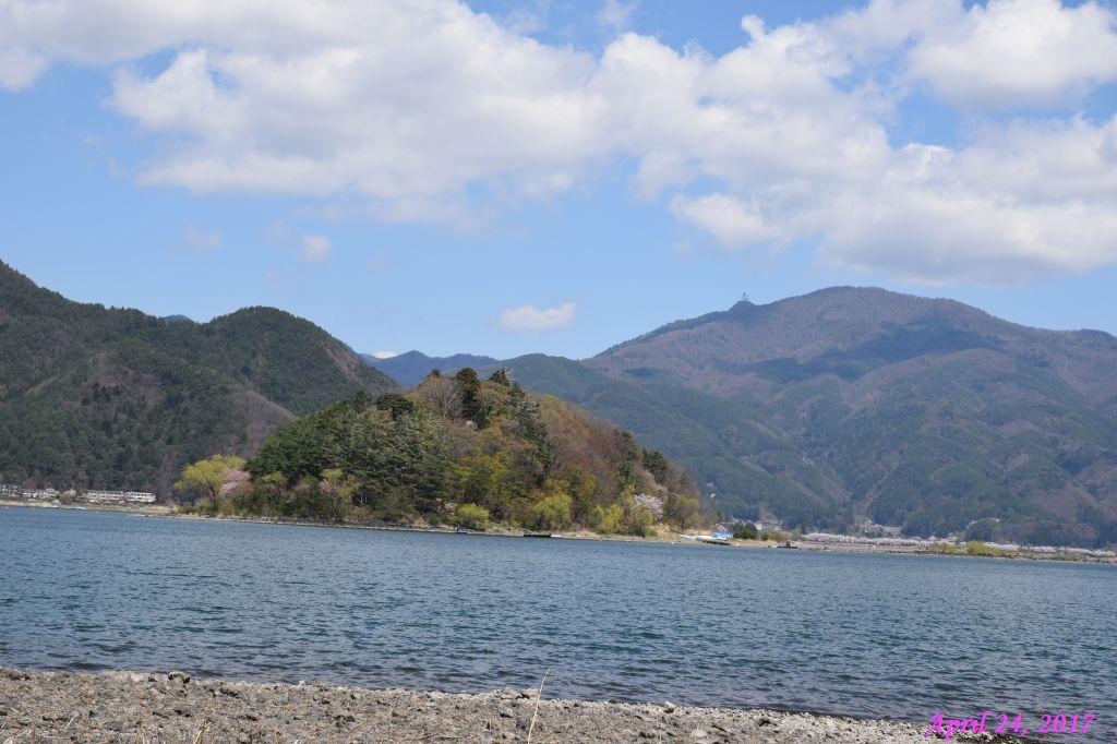 画像31(富士ビューホテルの桜)