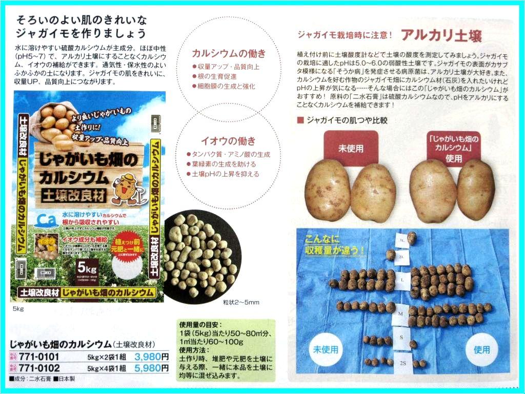 画像18(サカタのカタログ ジャガイモとカルシウム)