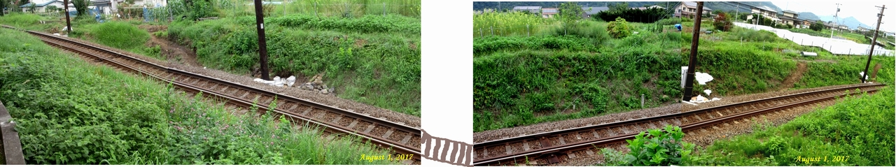 画像10(富士急行線の電路工事)