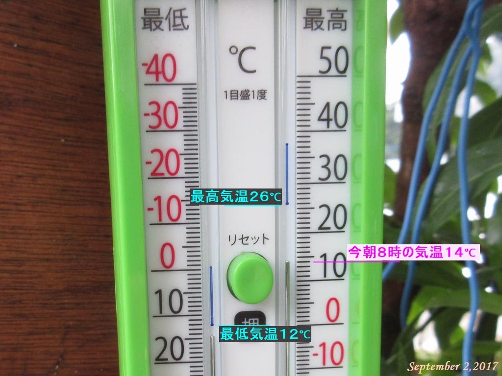 画像3(今朝の気温)