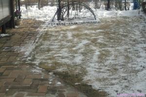 画像4(庭の除雪)