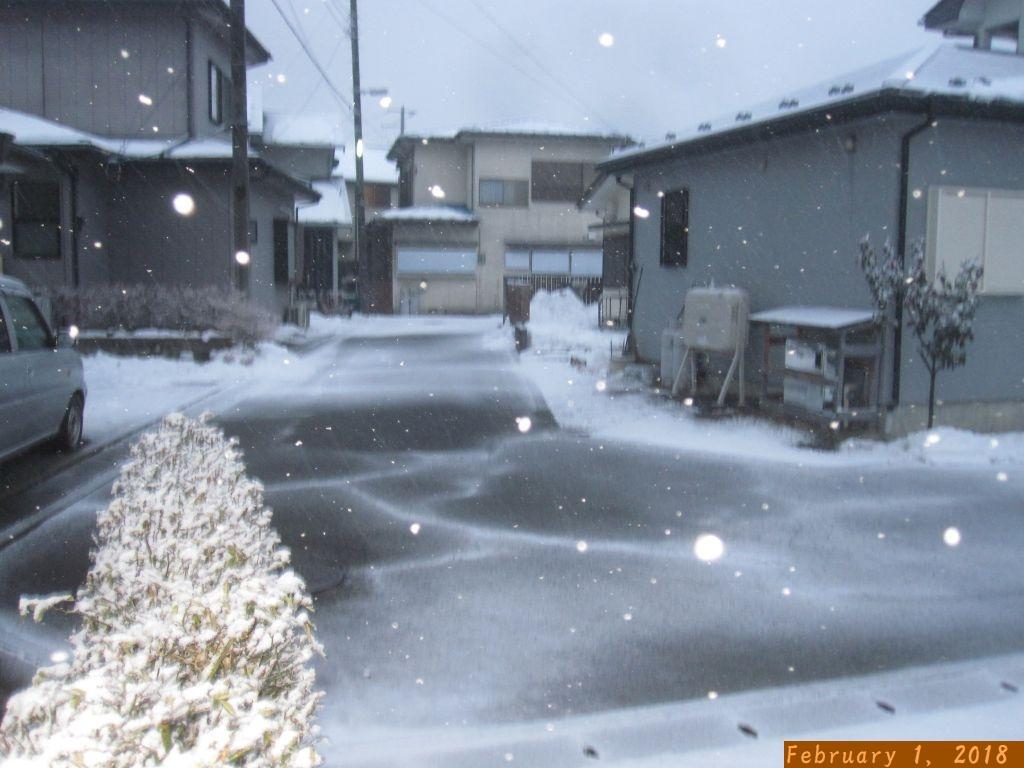 画像1(雪)