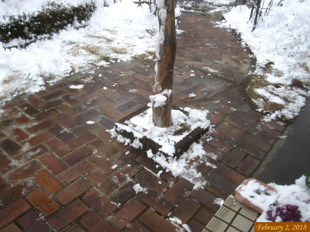 画像3(雪かき)