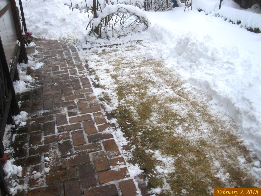 画像4(雪かき)