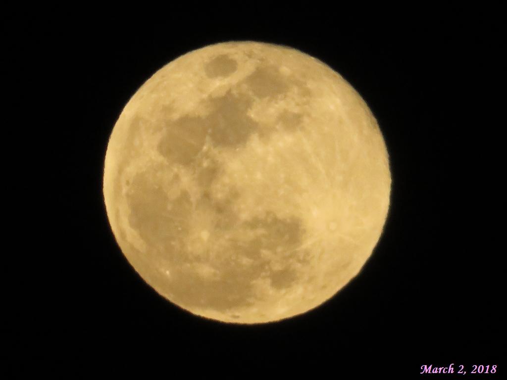 画像11(昨夜の満月)