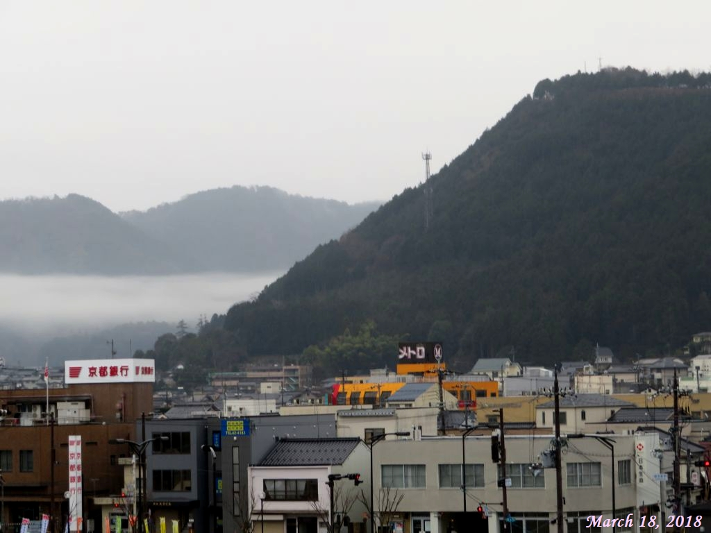 画像2(雨の朝)