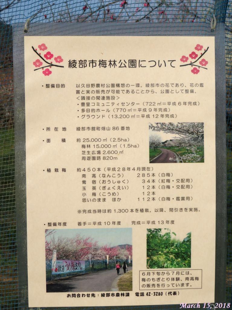 画像7(梅祭りのポスター)